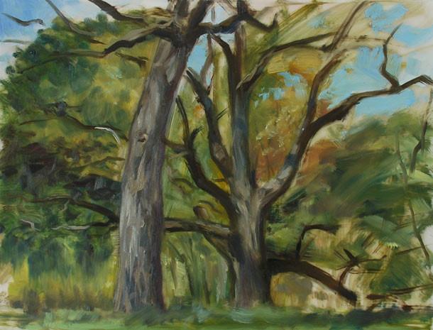 Stephen noble treesonmylar1w