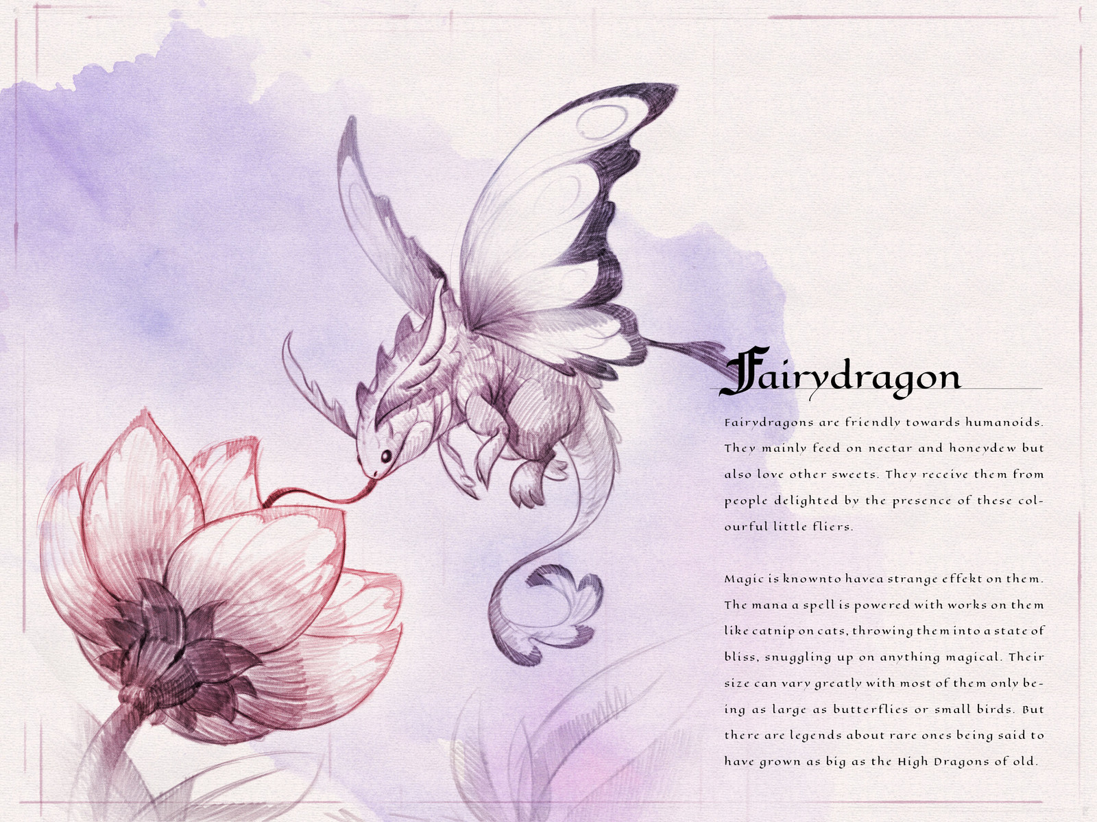 Page one of the  Dragon Compendium showing and describing the Fairydragon