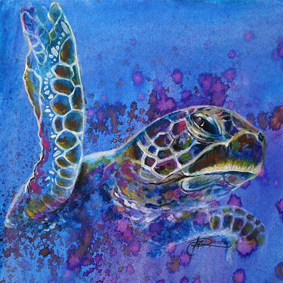 Angelica zurawski turtle