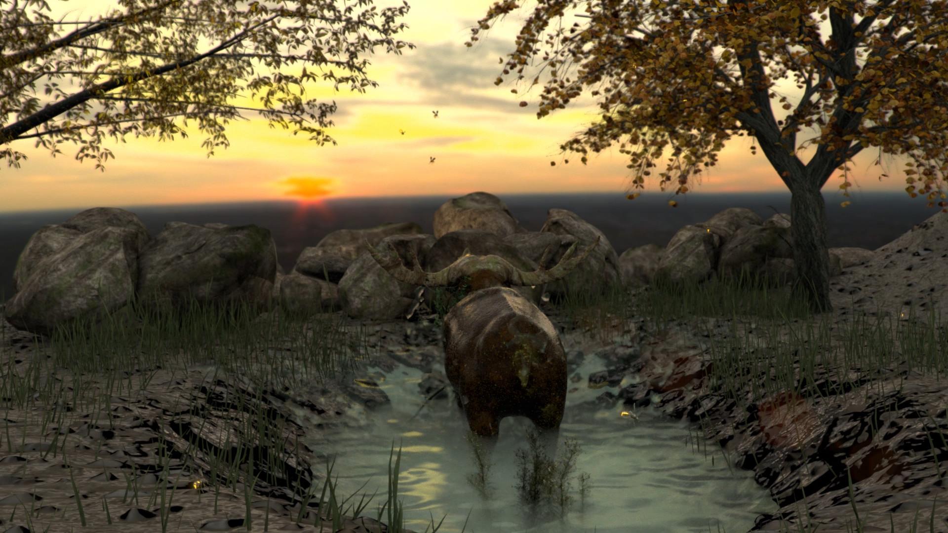 Juriaan wolters buffalo 2