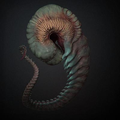Sadan vague larvae 4