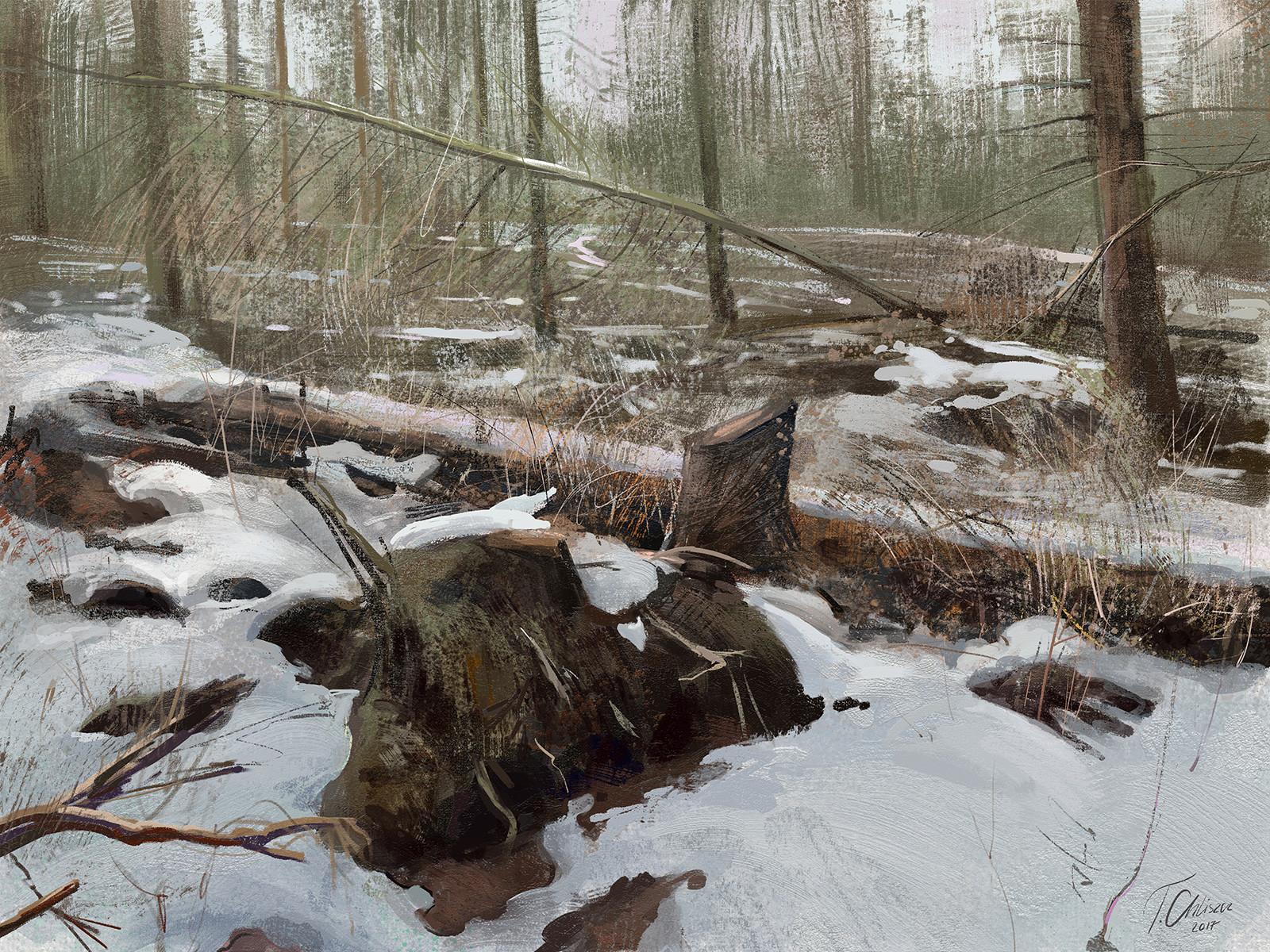 Tymoteusz chliszcz landscape34 by chliszcz