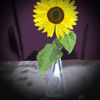 Andre smith sunflower1
