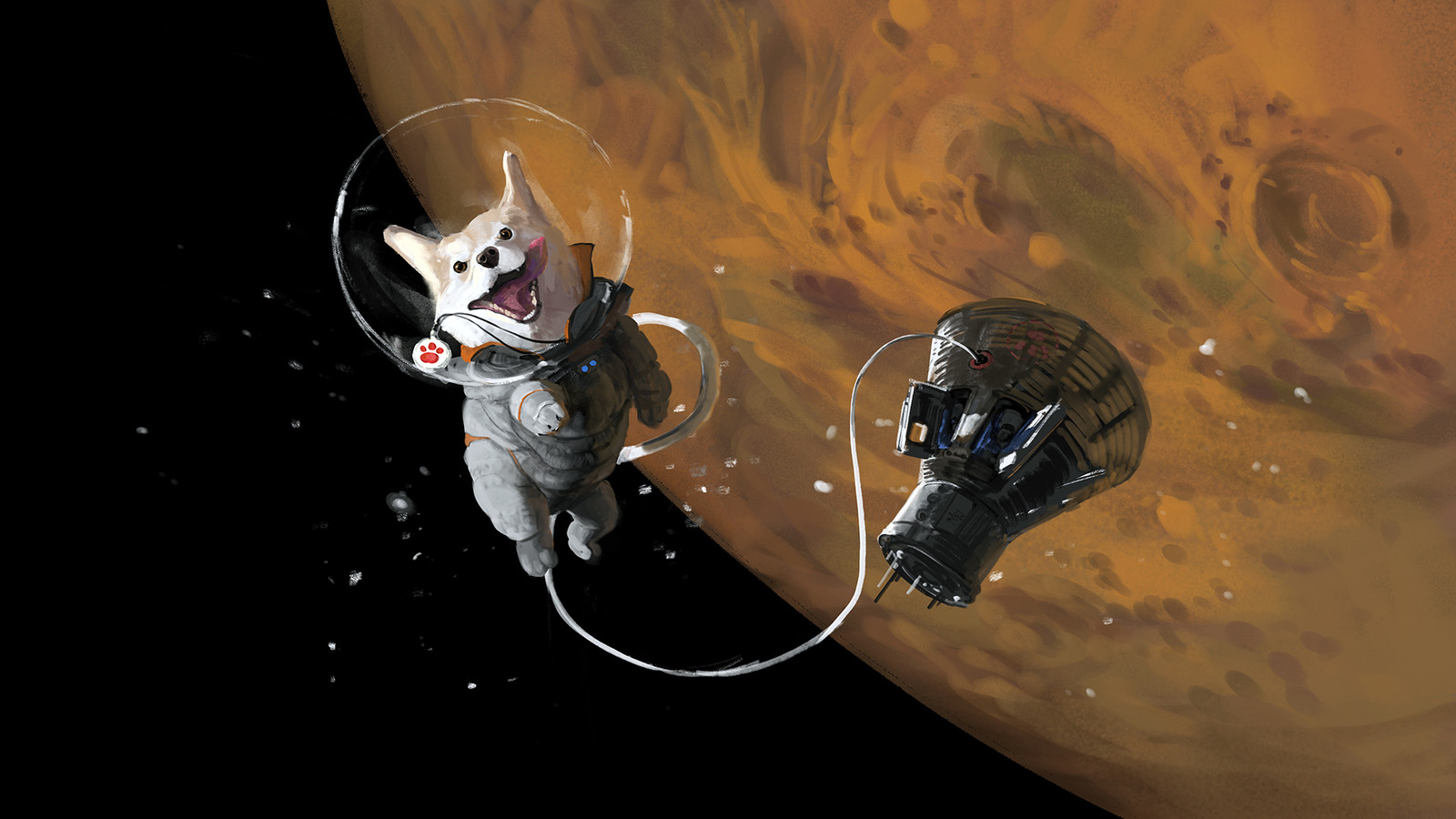 Space doge
