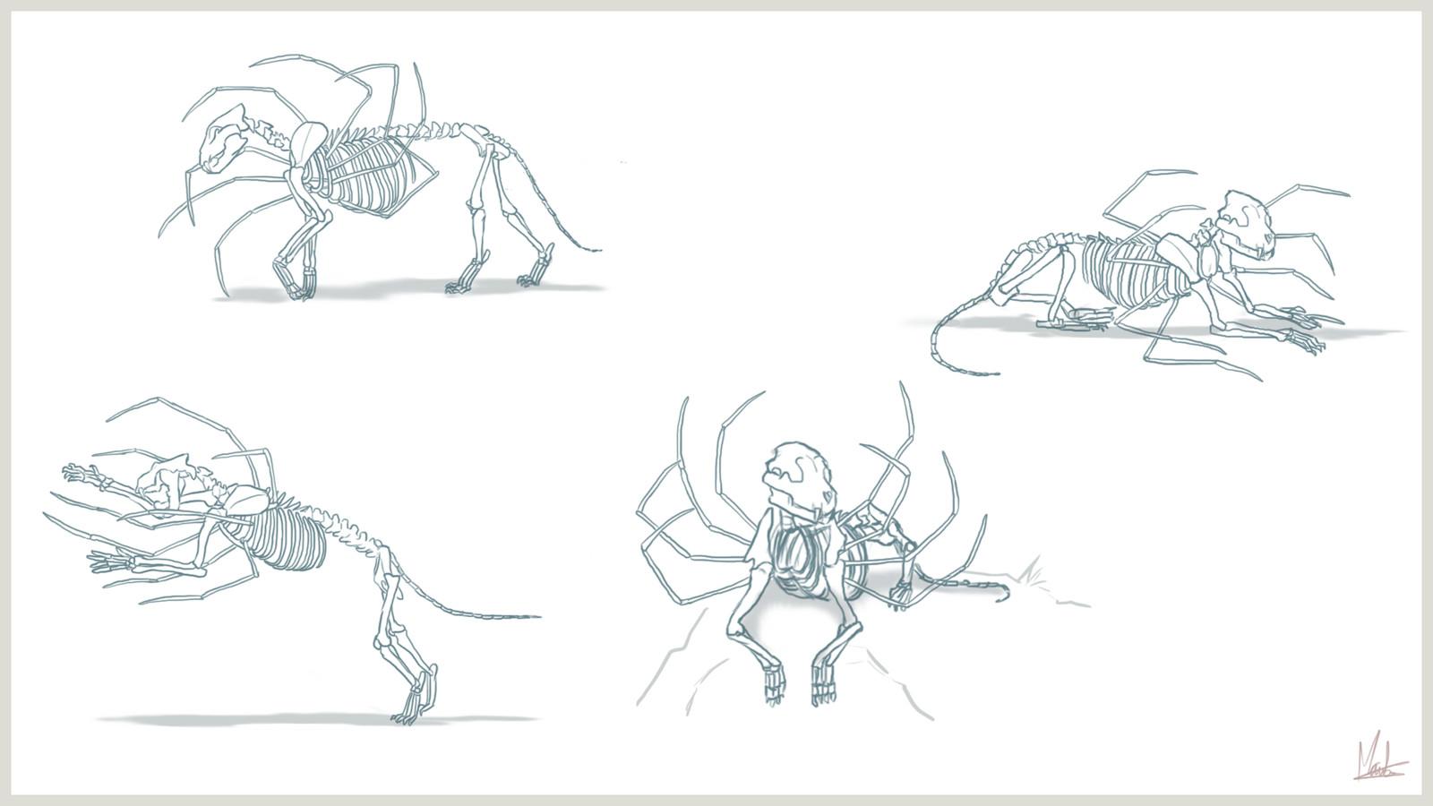 Sheet 3 - bones