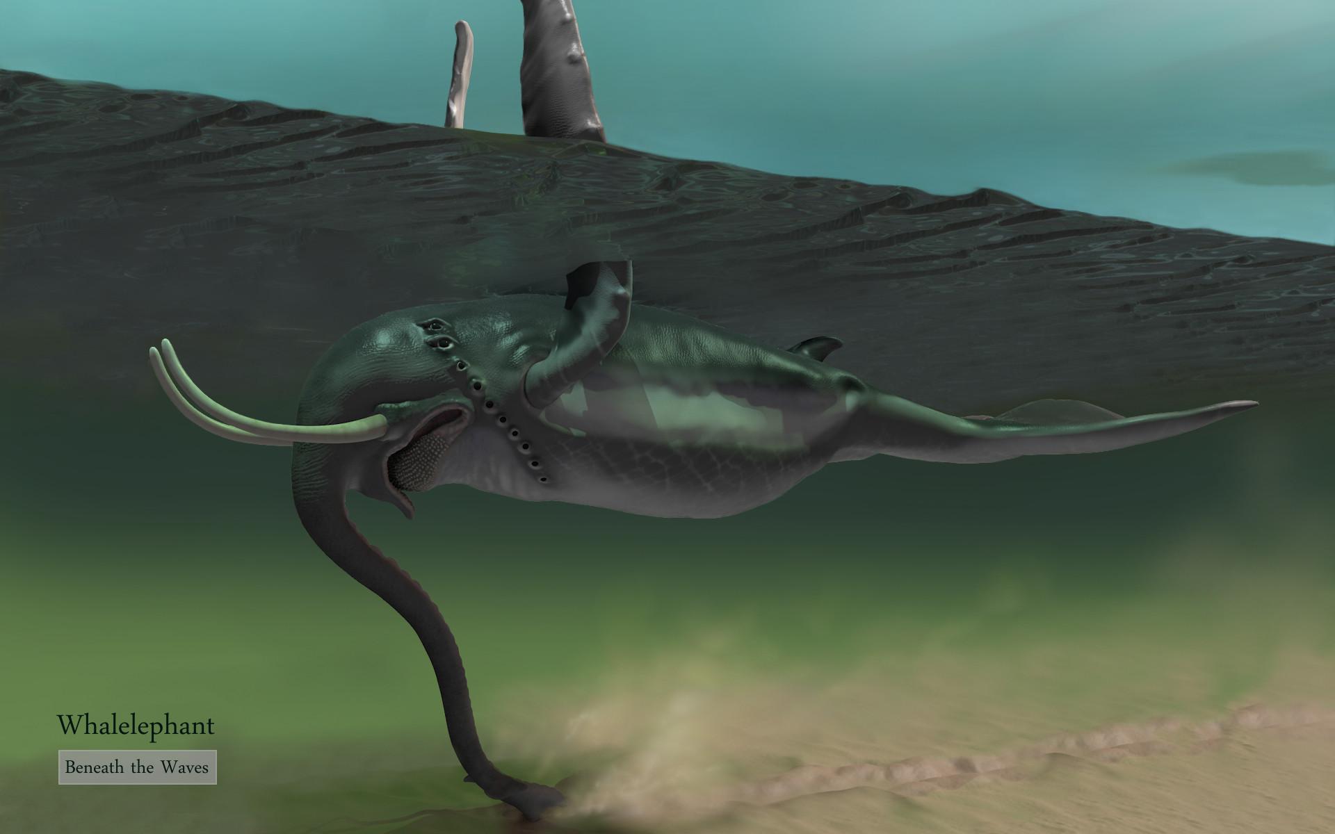 Dariusz andrulonis 06 a whalelephant