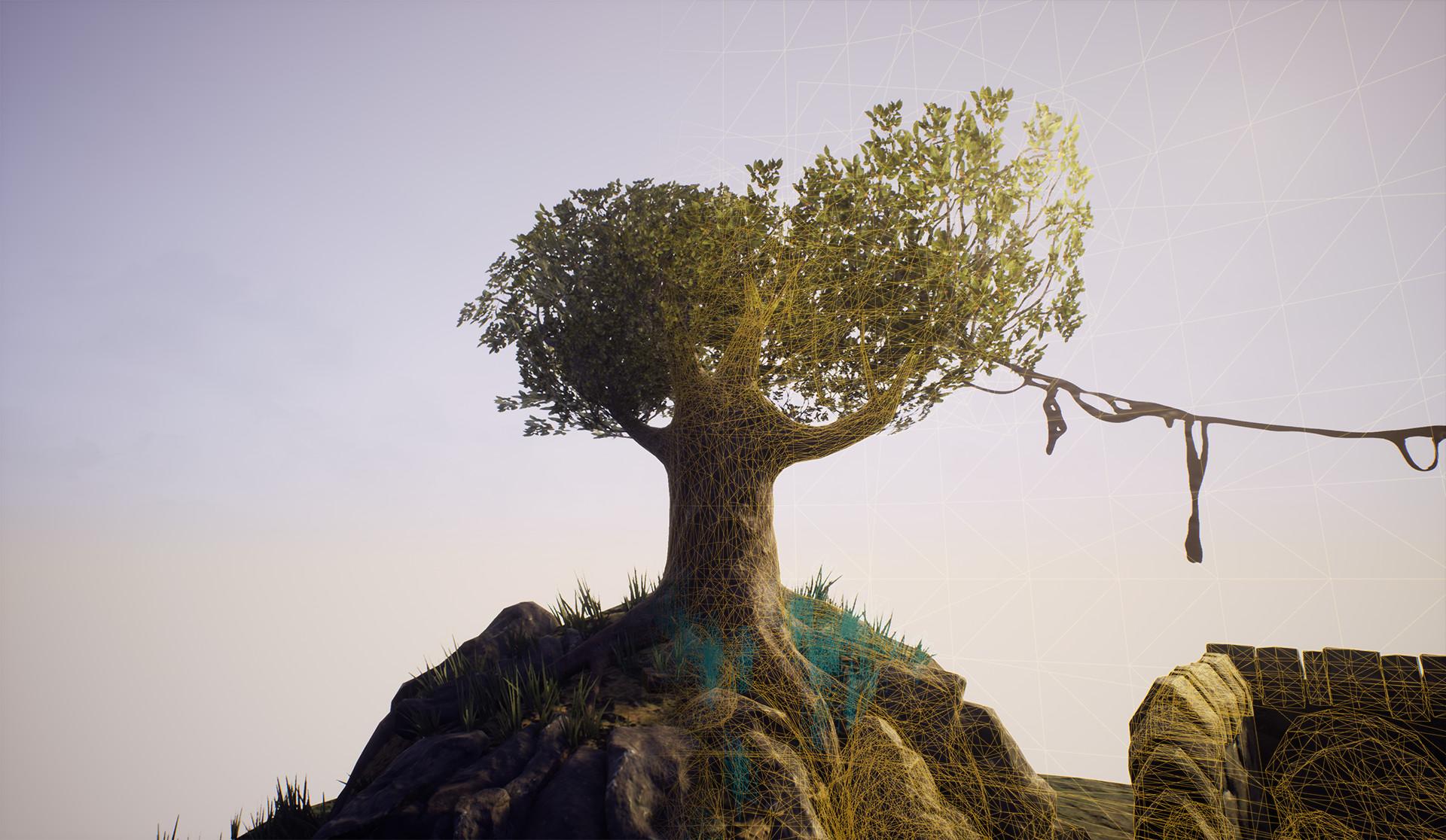 Ben macauley treeshot