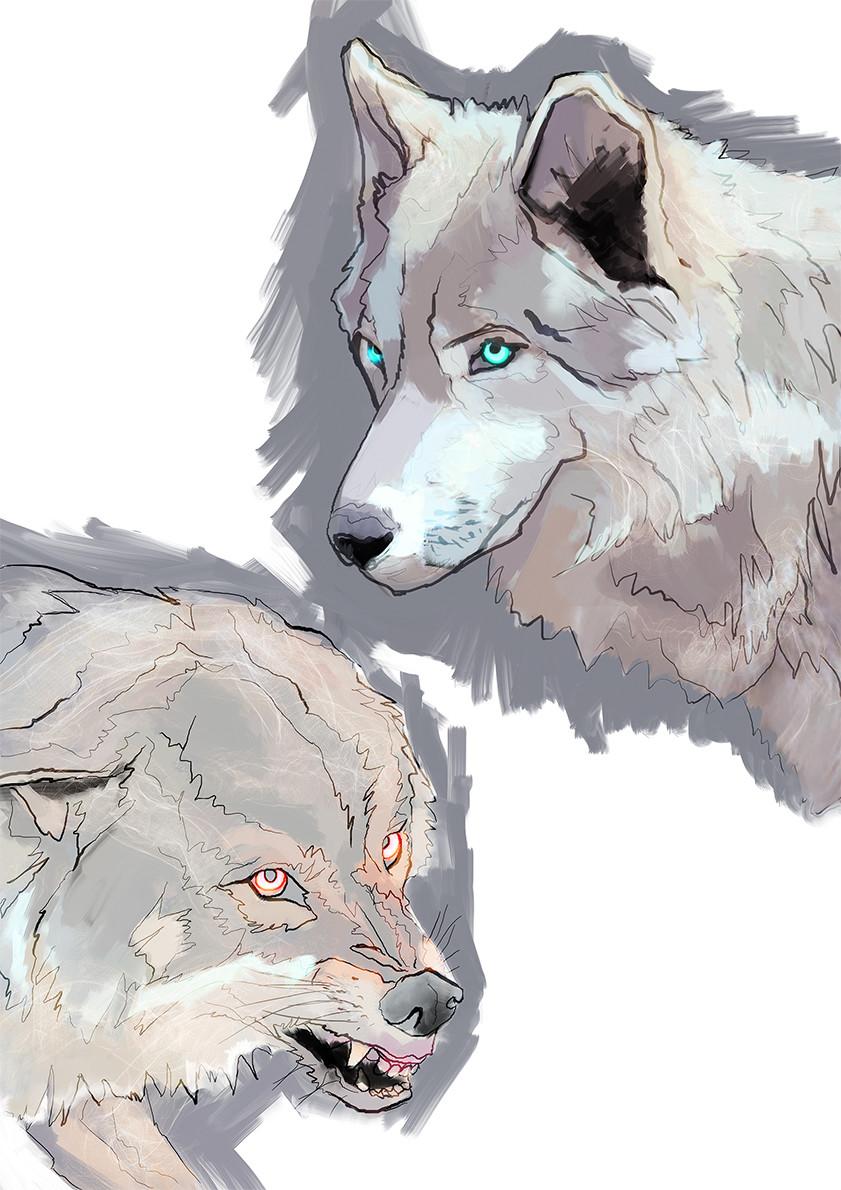 Alex tsoucas wolves72
