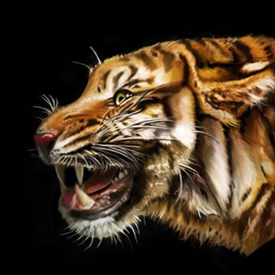 Kelly johnson johnsonkelly tigerstudy