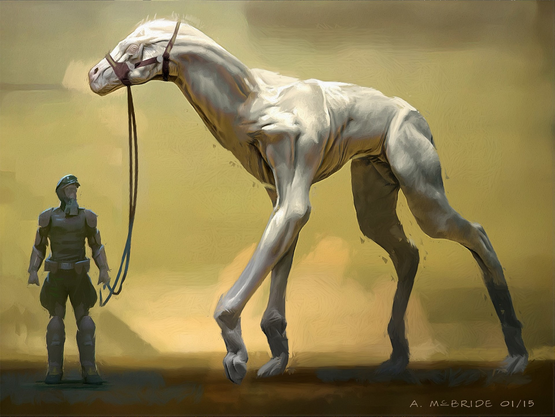 Aaron mcbride 150203 horsehound 01 amcb