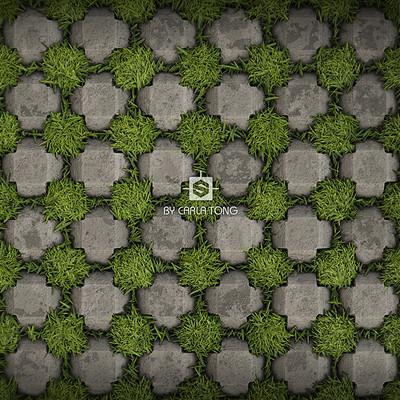 Carla tang brick grass checker 09