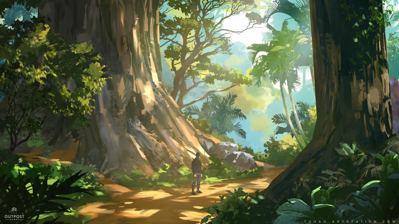 Sylvain sarrailh forest1
