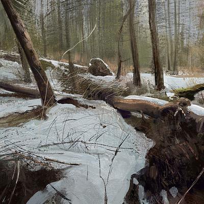 Tymoteusz chliszcz landscape29 by chliszcz