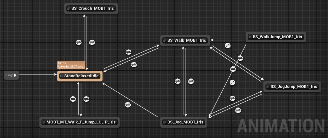 Animation blueprint/state machine for the character.