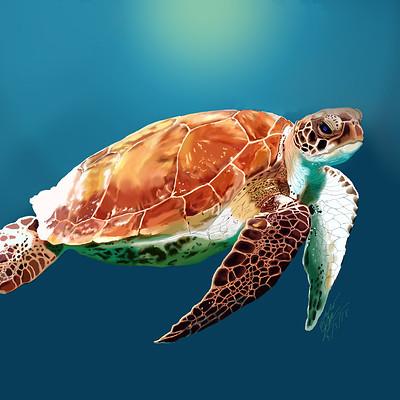 Andre smith sea turtle1