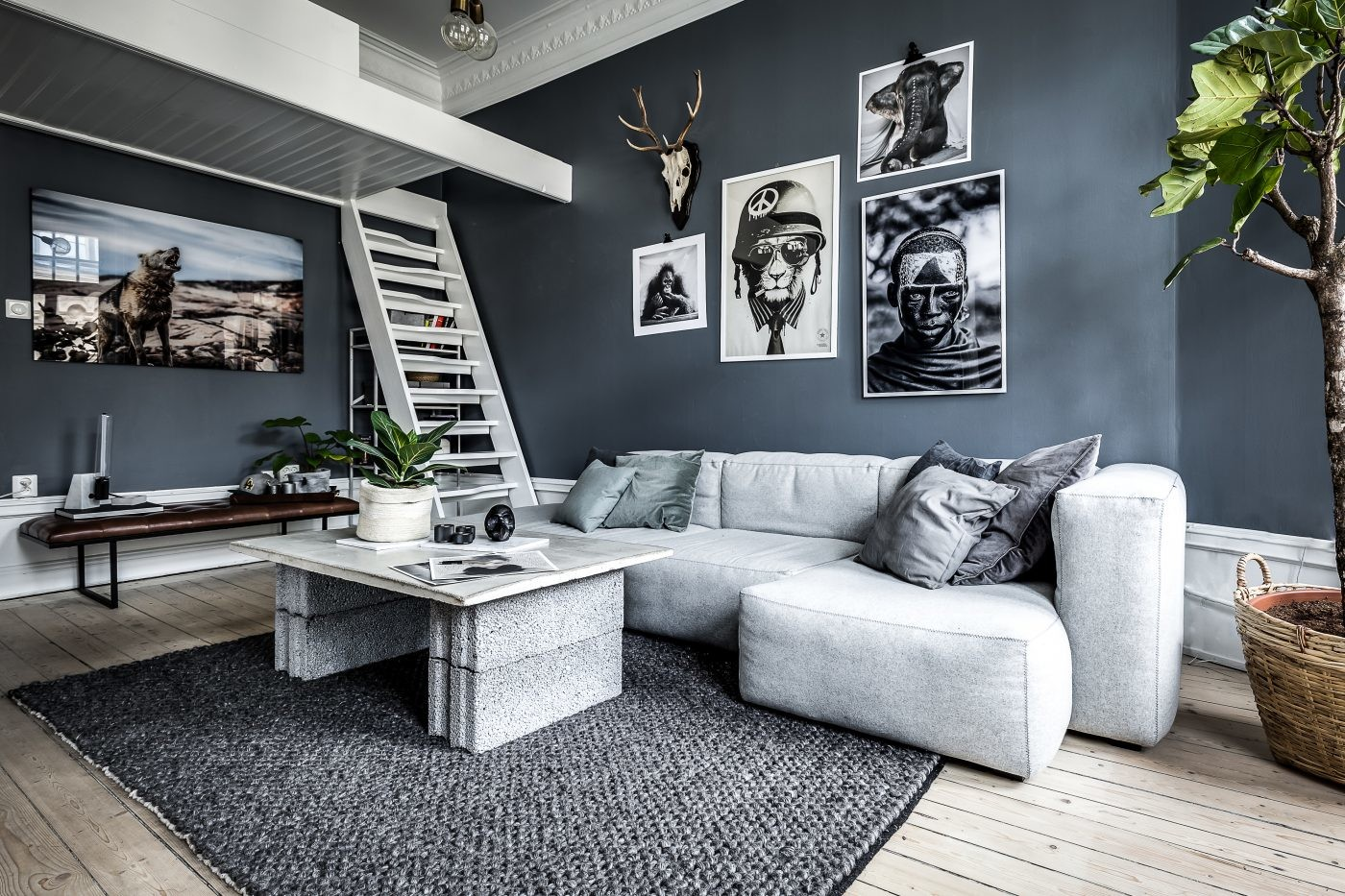 Alex Dvorak My Dream Apartment