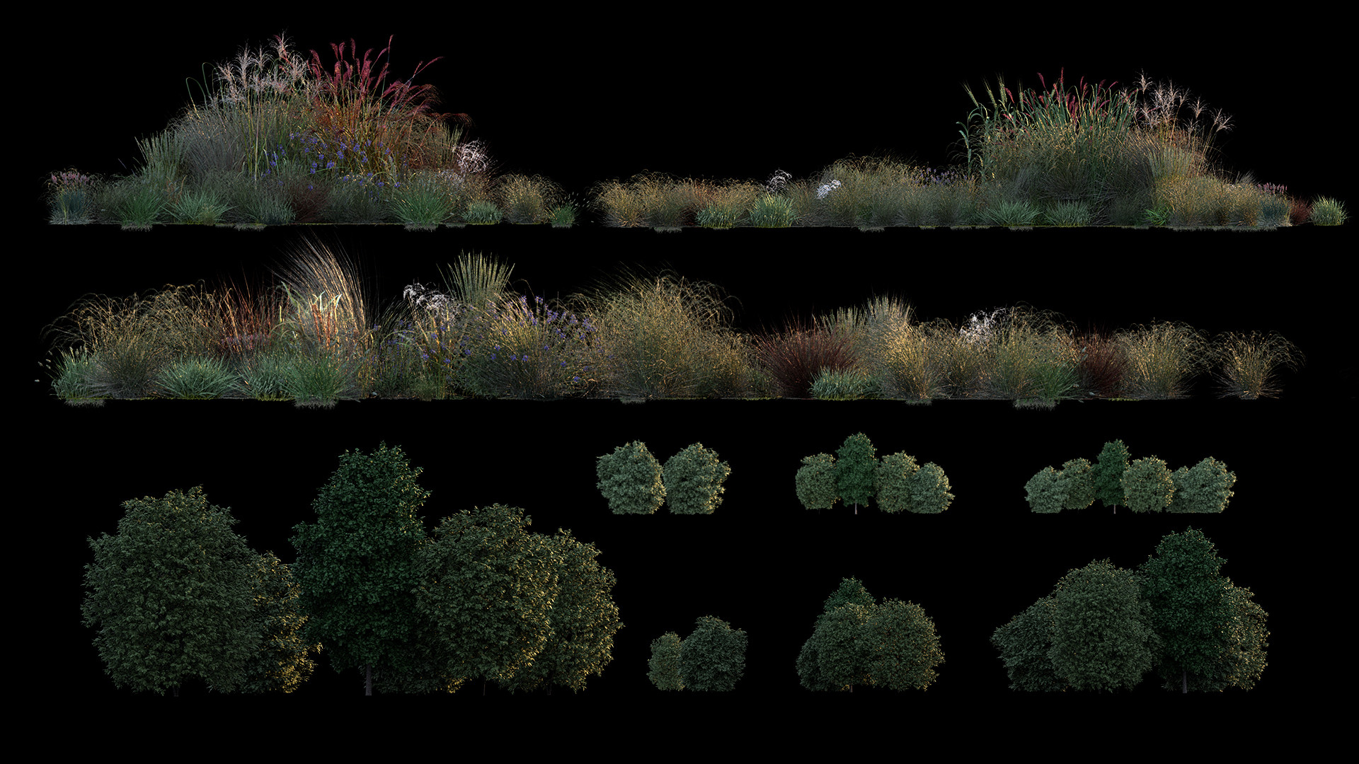 Benjamin bardou 005 vegetation