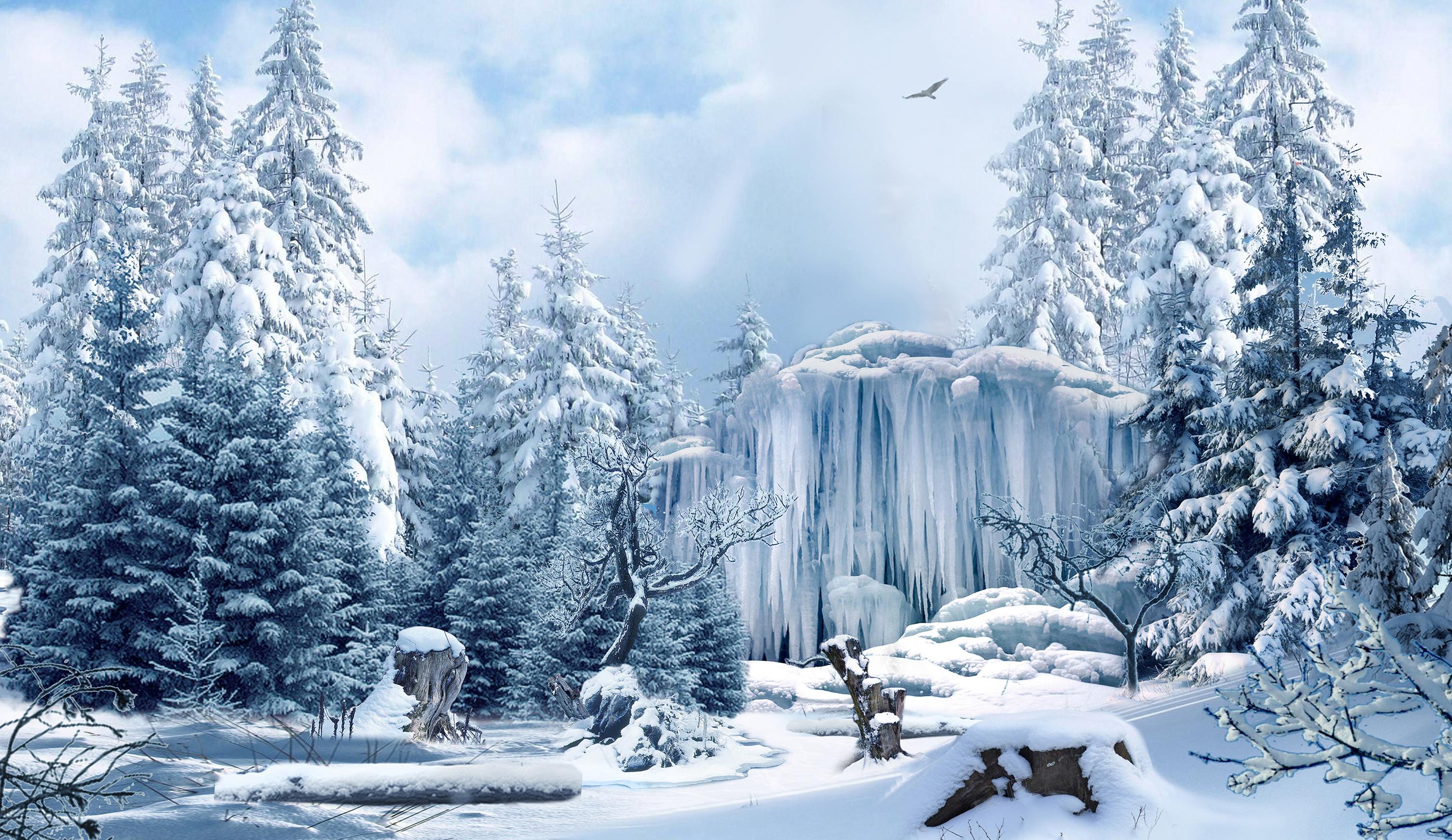 Glinda's Winter Garden - ABC's Once Upon a Time Season 3