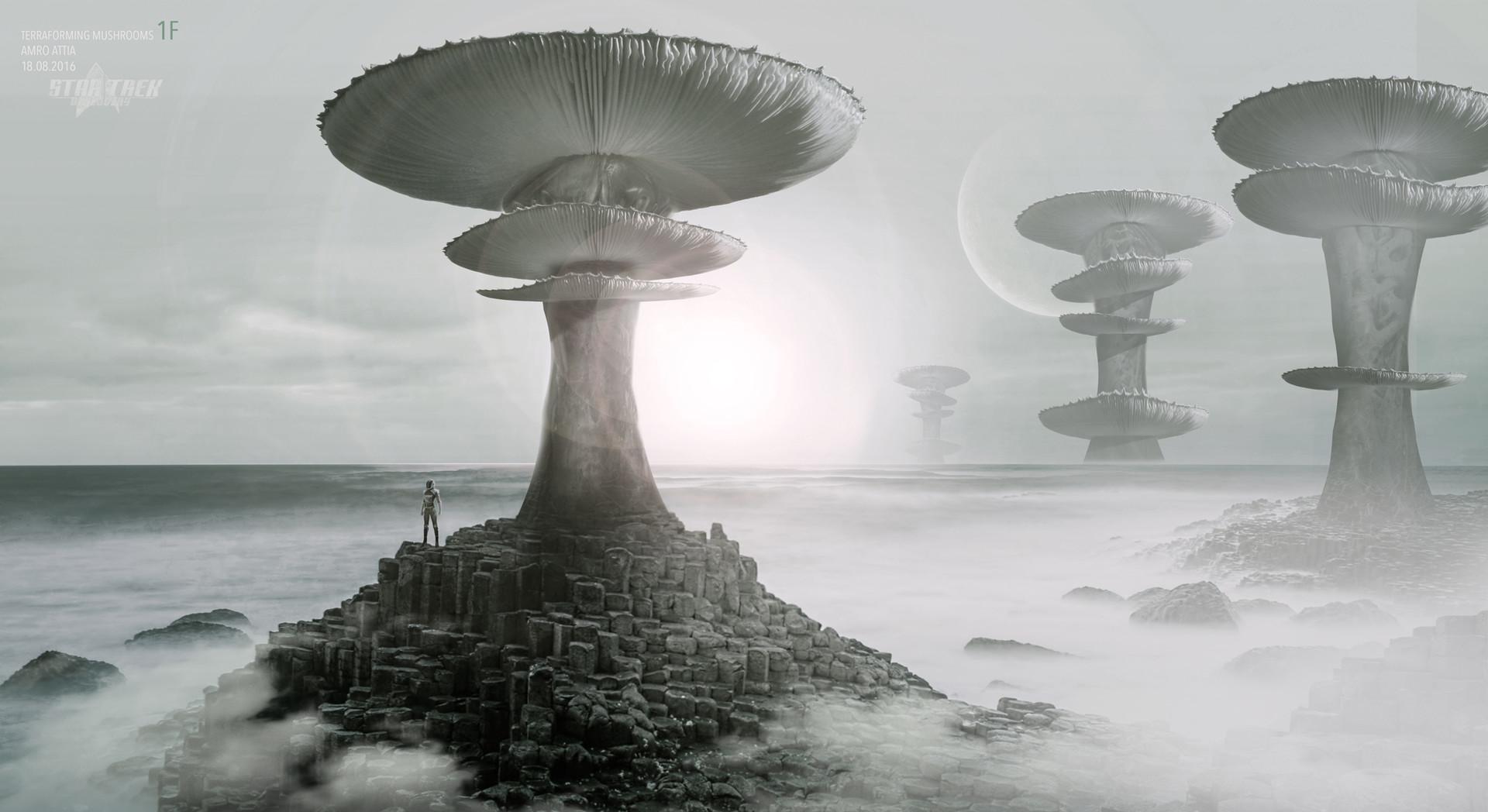 Amro attia terraforming mushrooms1f