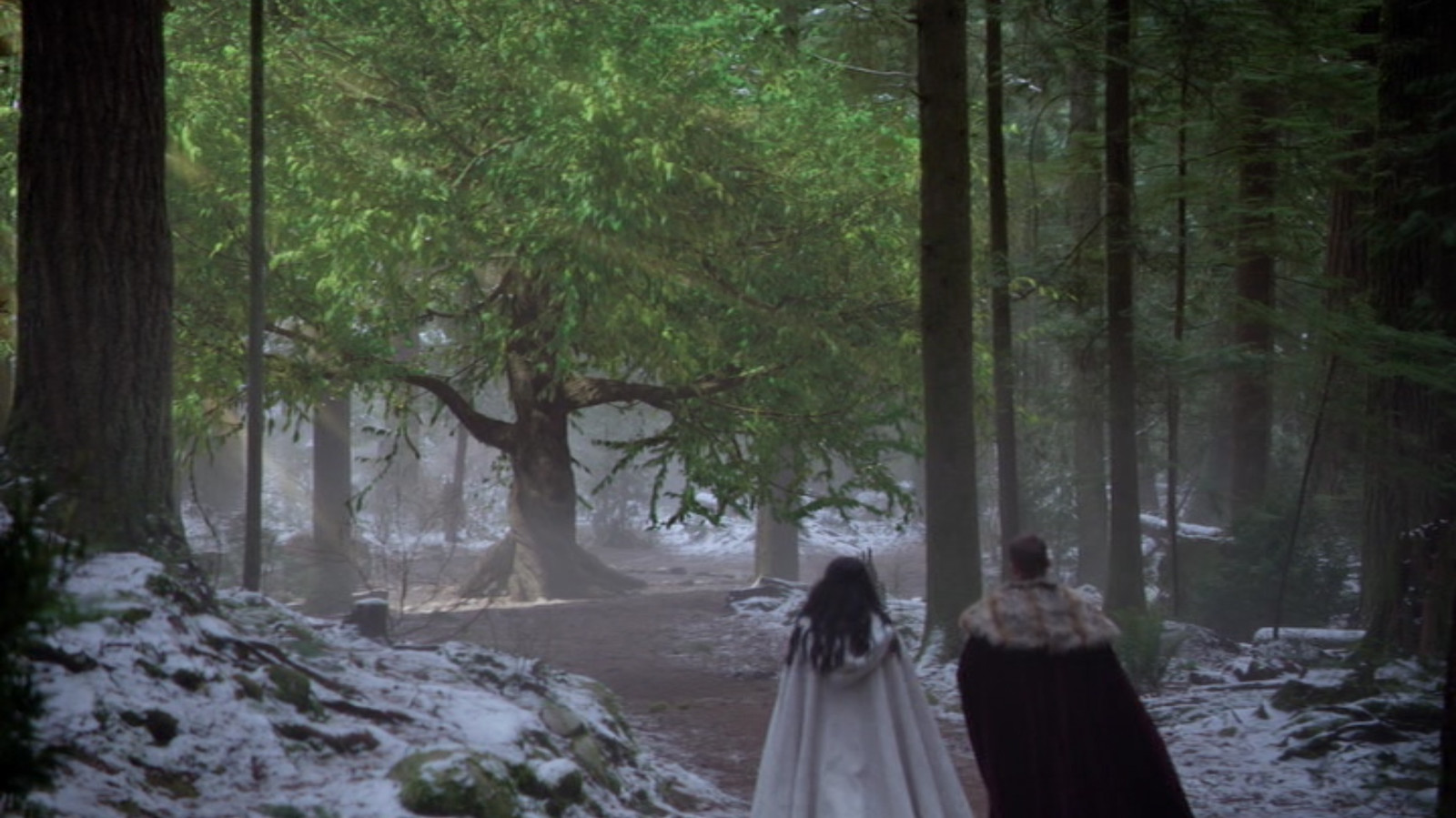 Tree of Wisdom Effect - Once Upon  a Time Season 4 - Final Shot by ZOIC Studios
