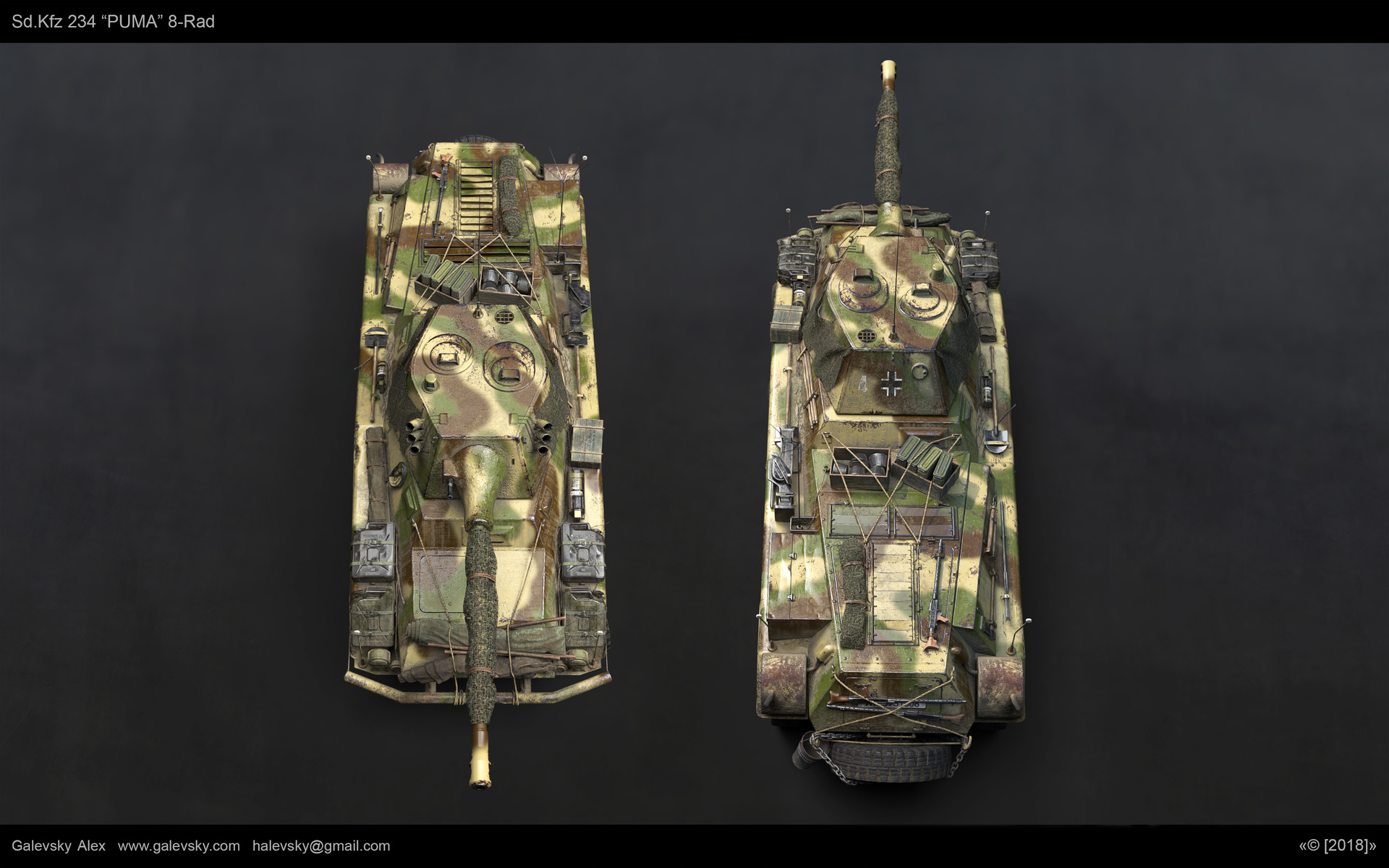 Aleksander galevskyi model fin 10