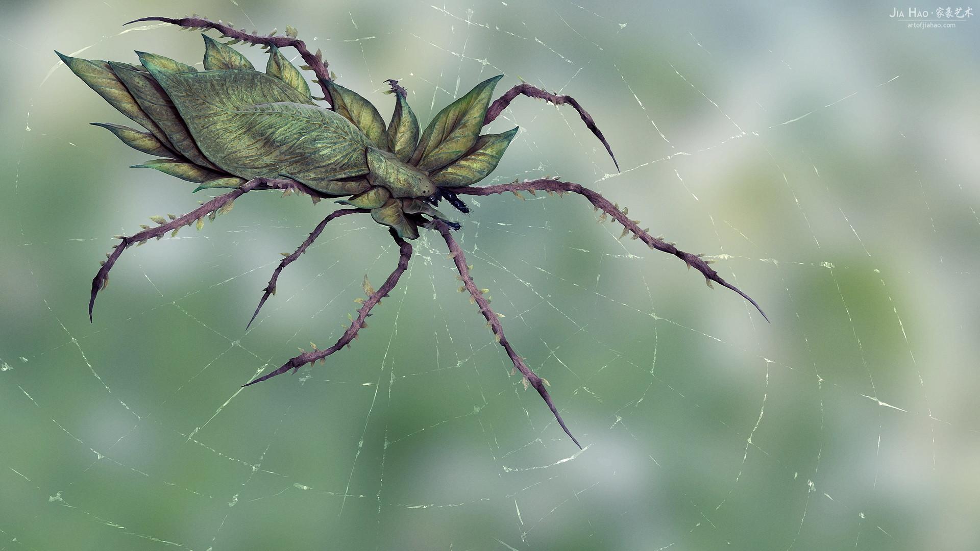 Jia hao 2017 leafyspider comp 01