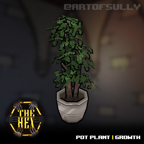 Pot Plant Growth (assets for 'The Hex')