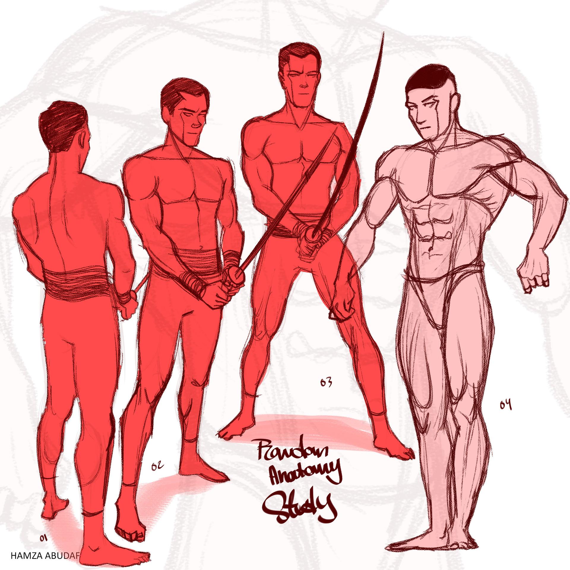 Hamza Abudaff Poses Anatomy Studies 01