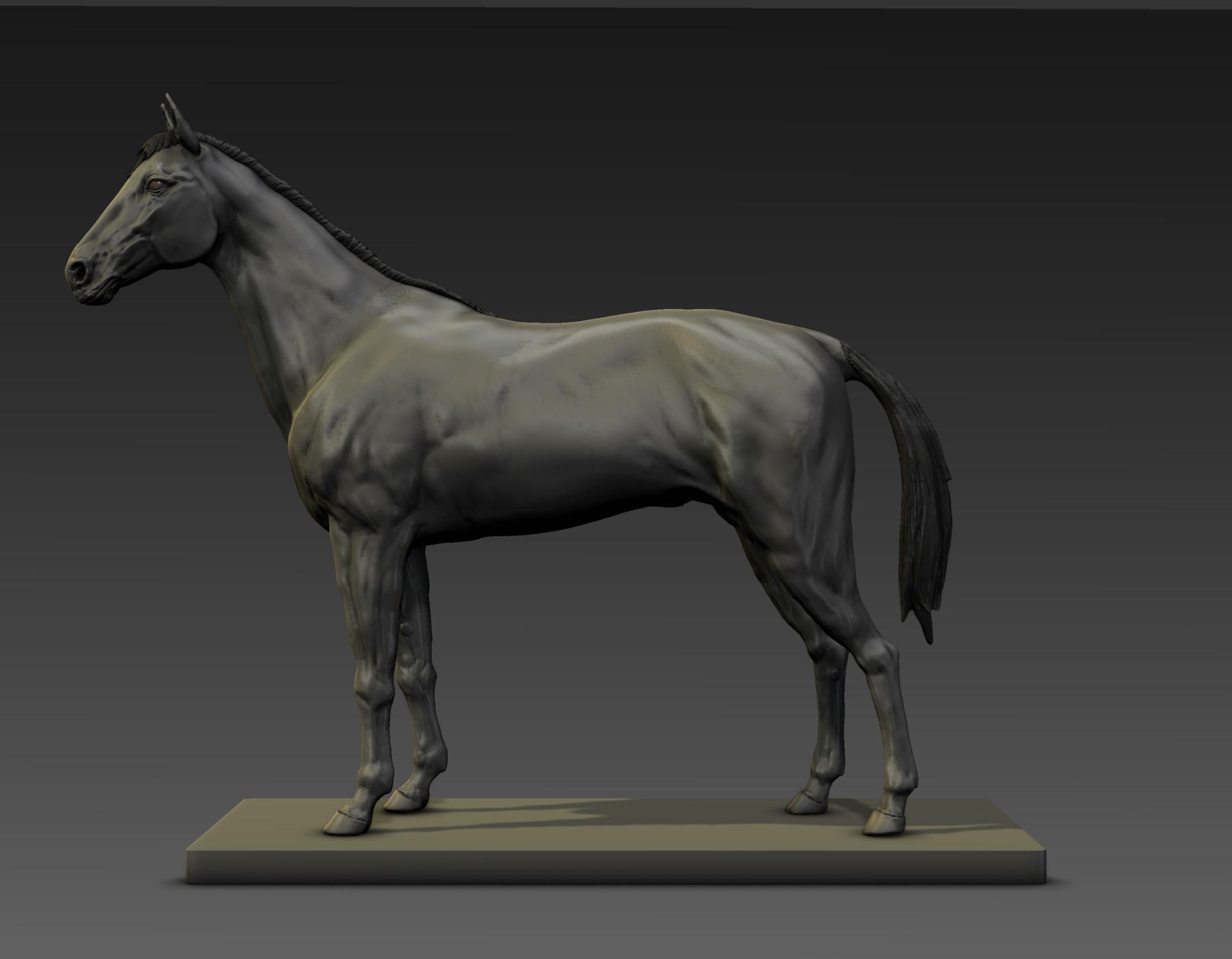 Sergio gabriel mengual horse pose mud still1