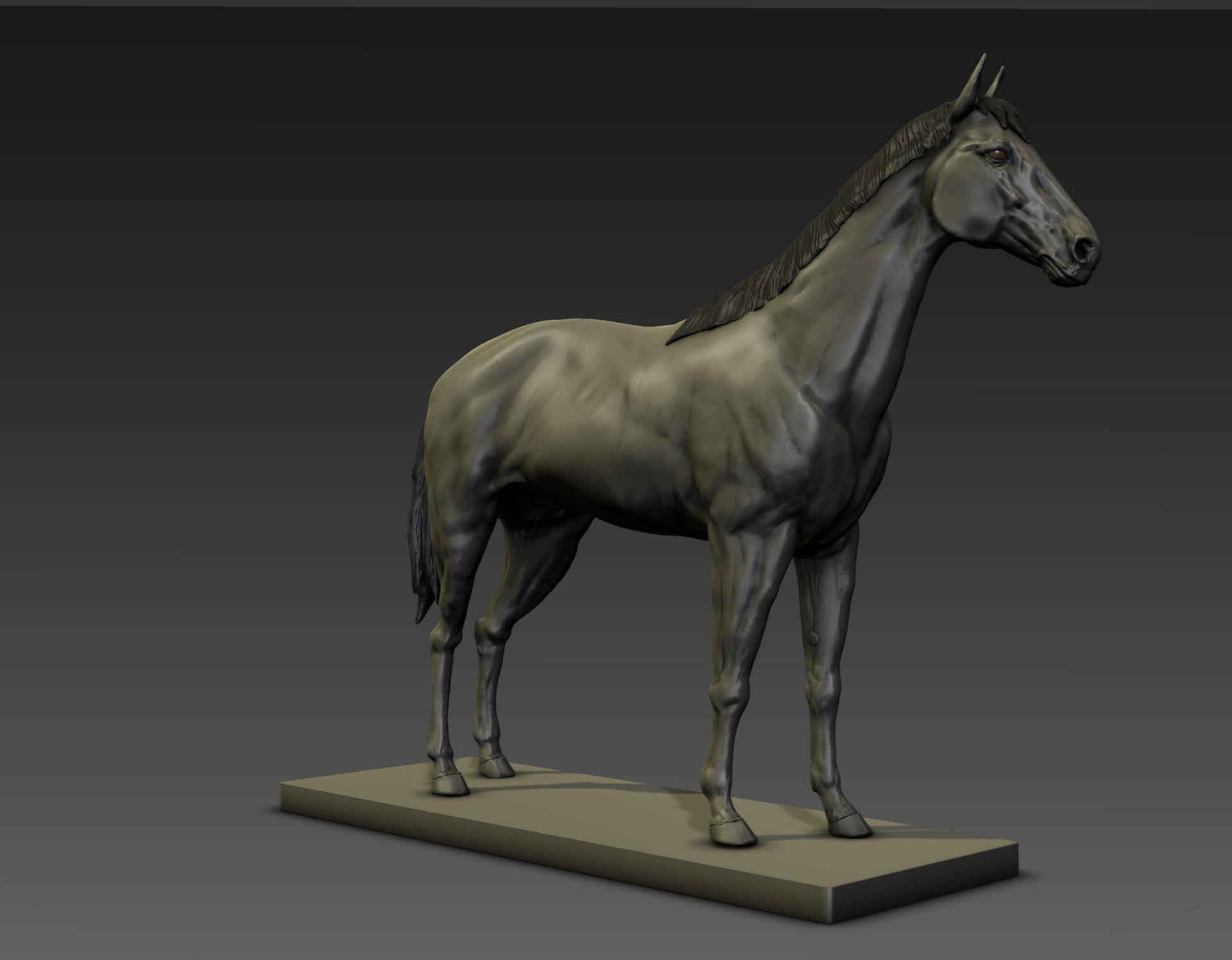 Sergio gabriel mengual horse pose mud still4