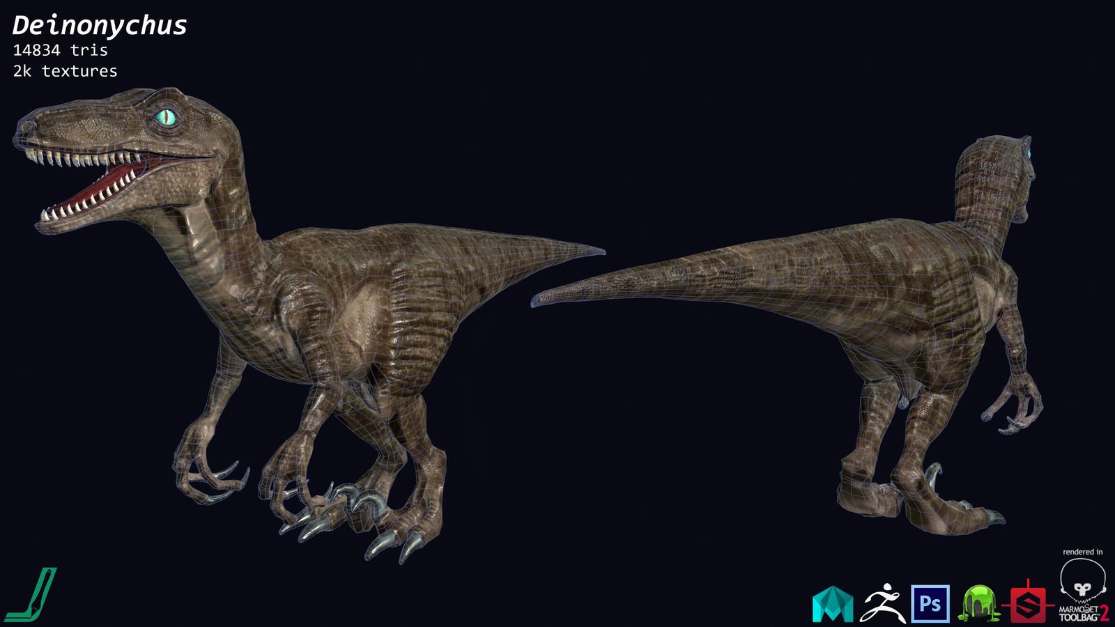 Deinonychus Polycount