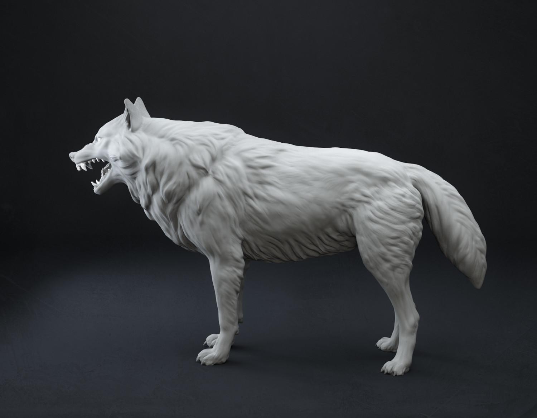 Sergei popovichev wolf 3
