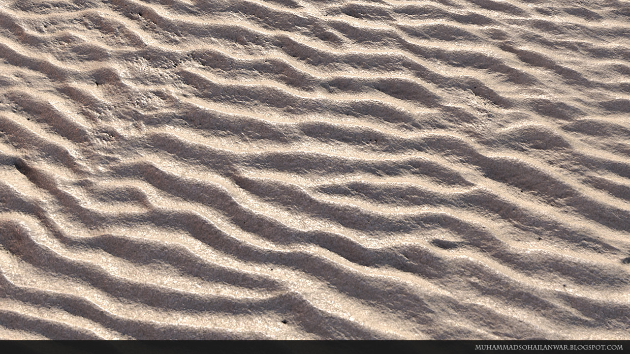 Detailed Sand Close Up View