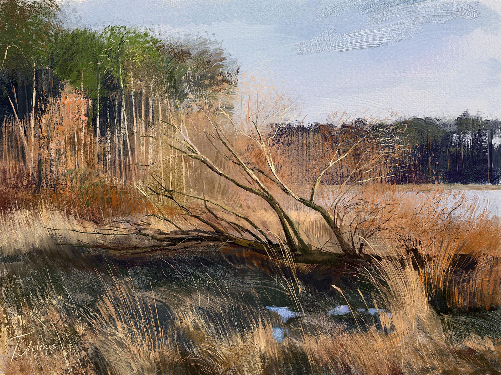 Tymoteusz chliszcz landscape82 by chliszcz