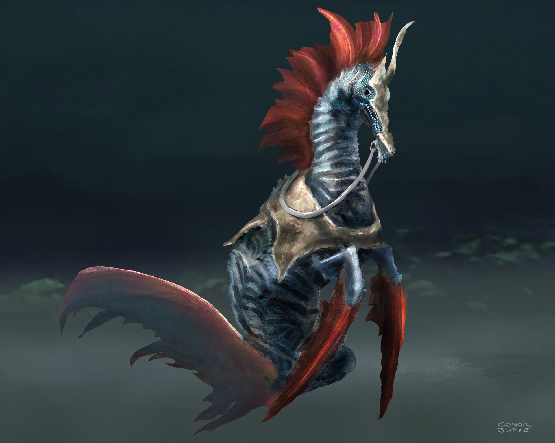 Conor burke conor burke btw denizen seahorse