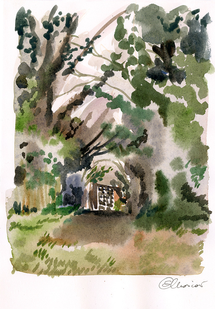 Balmore Walk - Watercolours studies