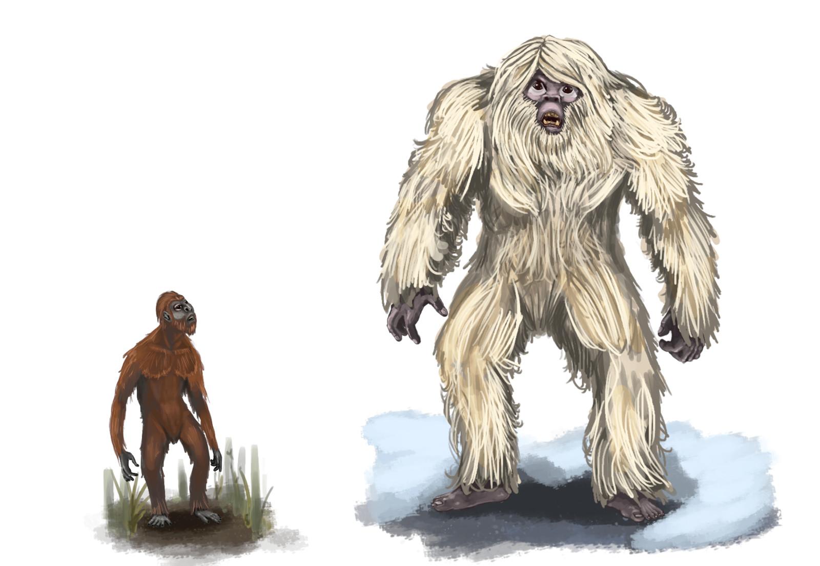 Orang Pendek and the Yeti