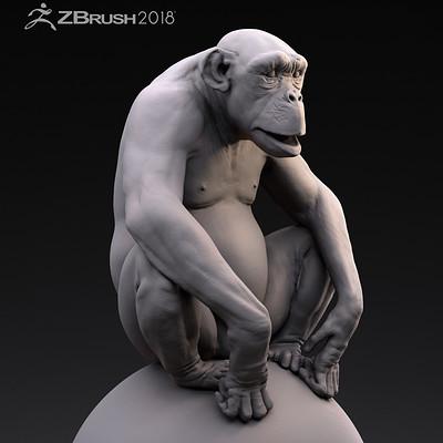 Jose rosales chimpclose