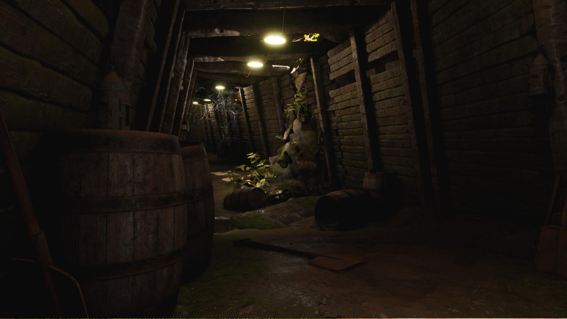 Maxim fortin tunnel03