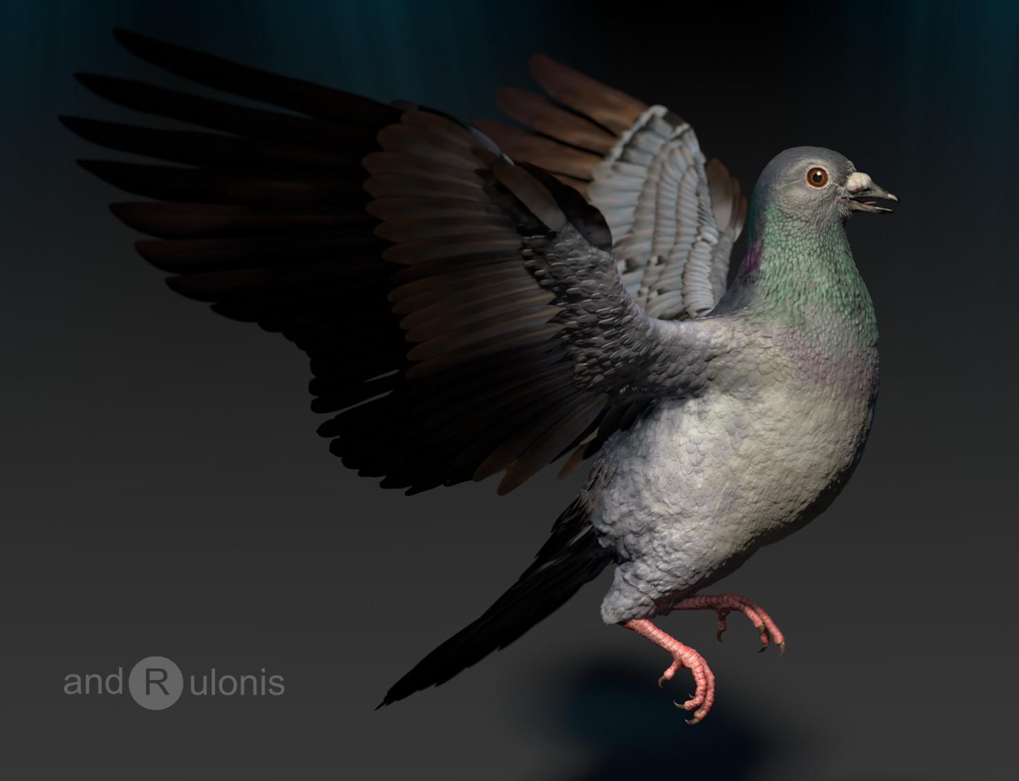 Dariusz andrulonis ptak 03