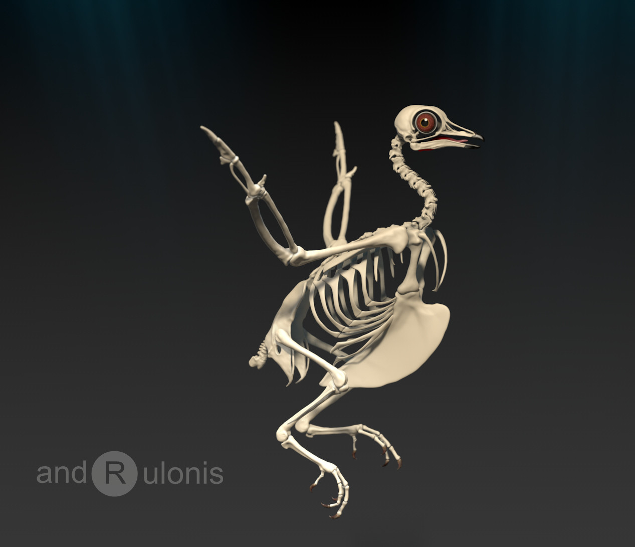 Dariusz andrulonis ptak 09