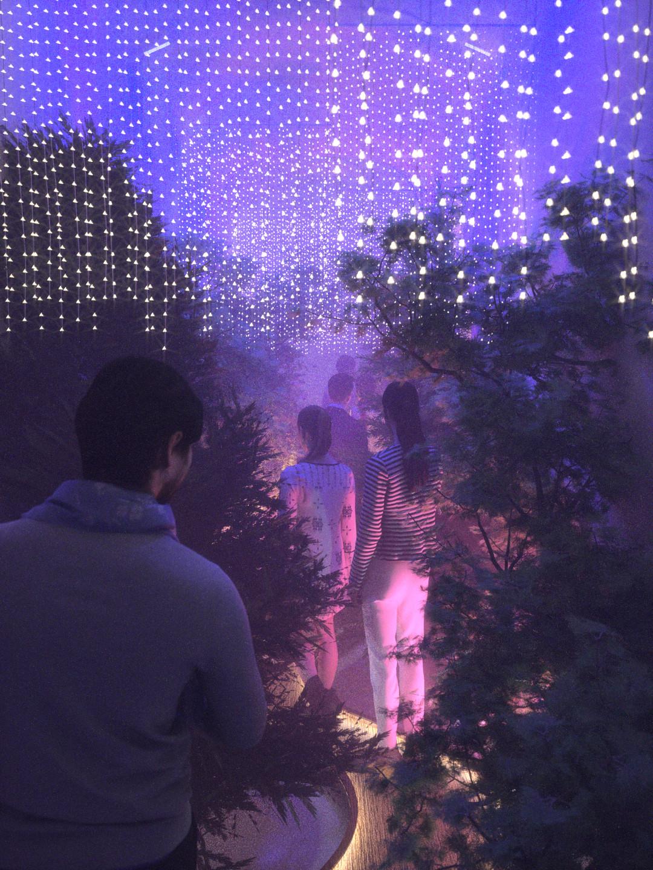 Duane kemp forest hallway scene 10 blue t pink b img