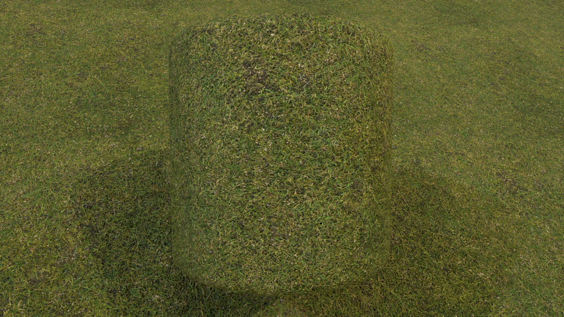 This was a Small Test Scan of a 2x2 Meter Piece of Lawn, made by me and a Colleague (Lukas Patrus).