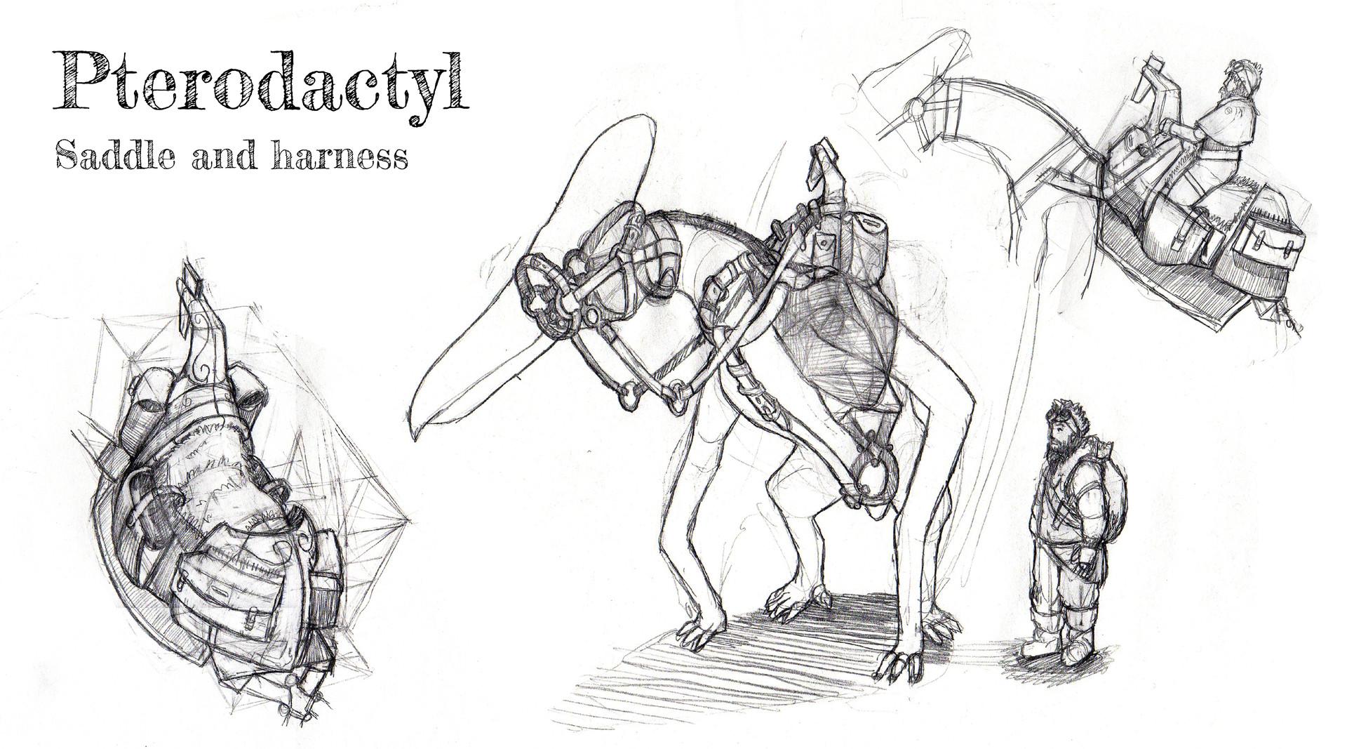 Tom mackintosh copy of pterodactyl