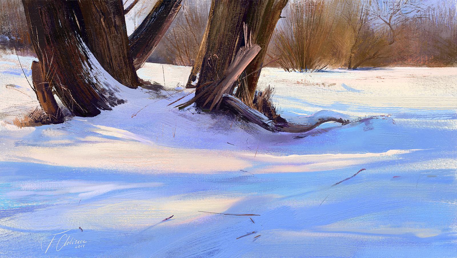 Tymoteusz chliszcz landscape102 by chliszcz