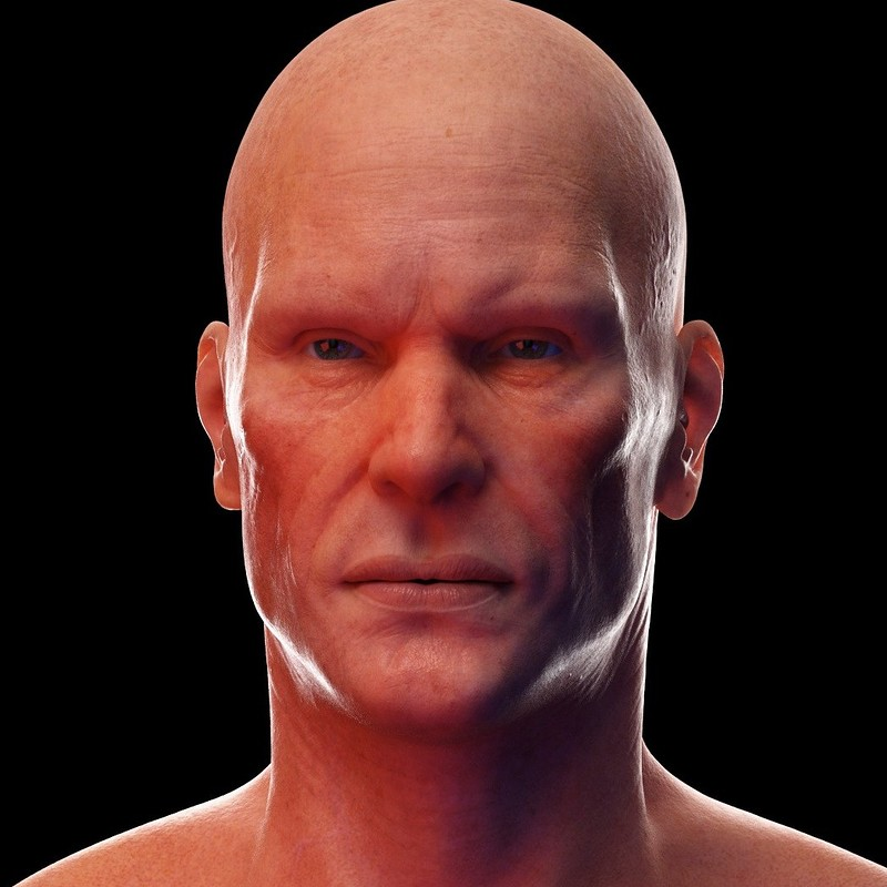 Work in progress human basemesh