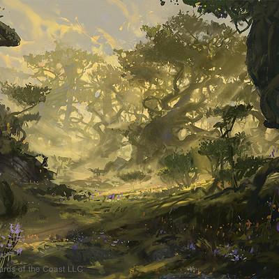 Dimitar marinski dimitar marinski dominaria forest