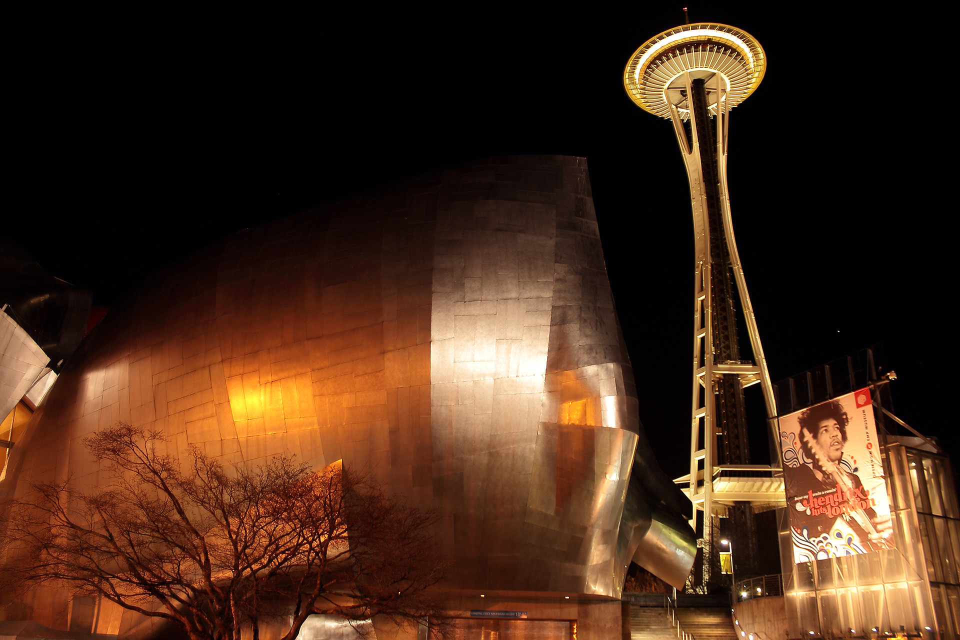 Reha sakar space needle