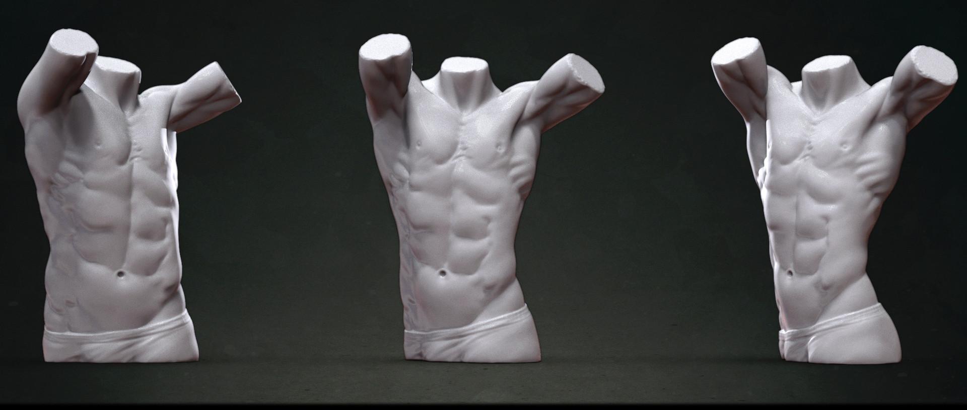 Rahul garg (Doyen) - Male Torso Anatomy Study