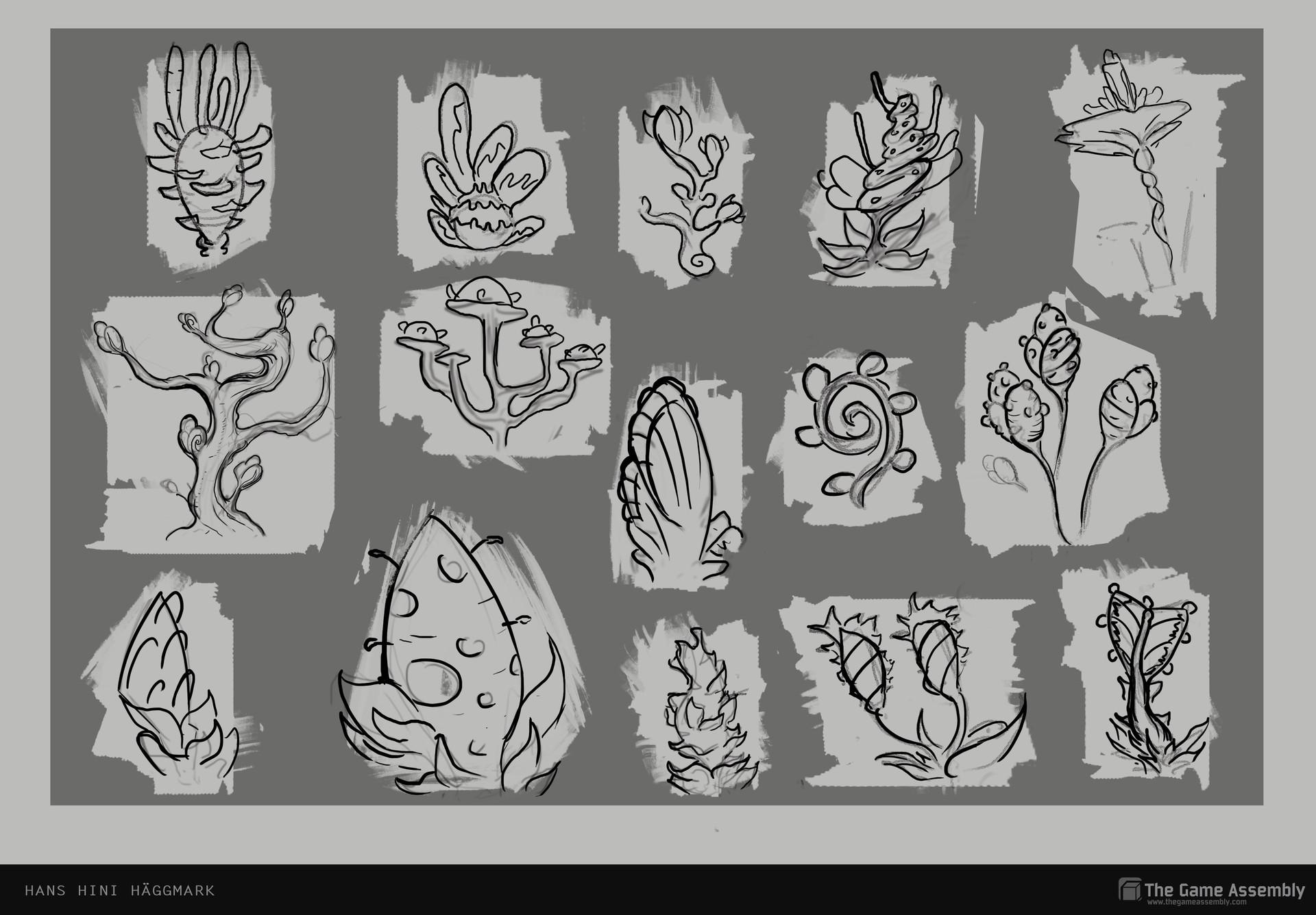Hini haggmark flora sketches